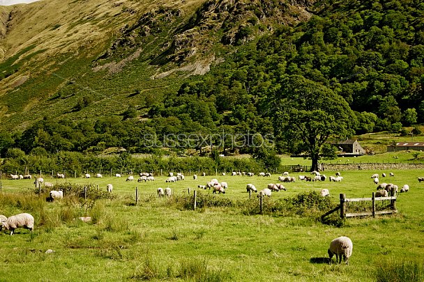 Lake District Photo