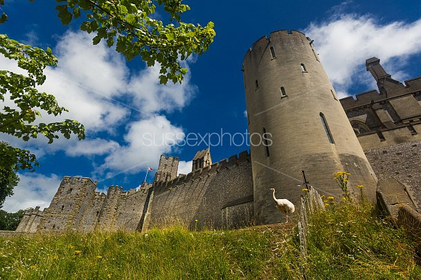 Arundel Castle Photo