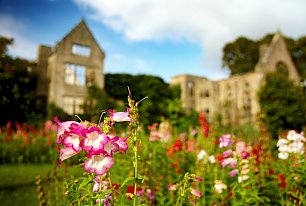 View Nymans Gardens Photos >>